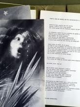 10-poemas-para-catarina-eufemia-4