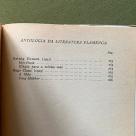 4-antologia-literatura-flamenga-fernanda-botelho