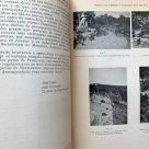 caminhos-romanos-caldas-monchique-4