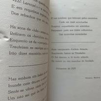 poetas-do-algarve-3